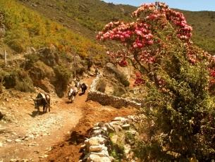 SUR LA ROUTE DE L'EVEREST - NEPAL