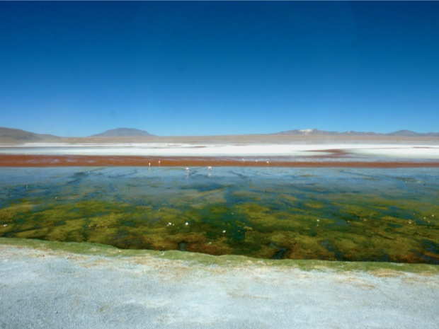Laguna Colorada, Sud Lipez, Bolivie