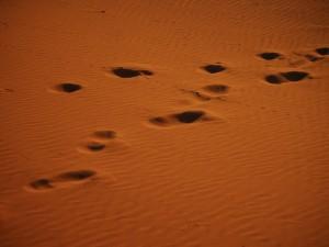 Pas sur le sable-Merzouga