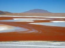 Laguna Colorada, Bolivie.